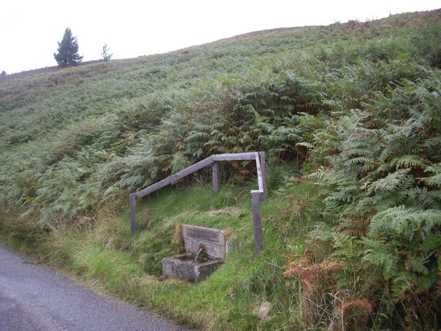 Drinking trough by road through Forest of Birse