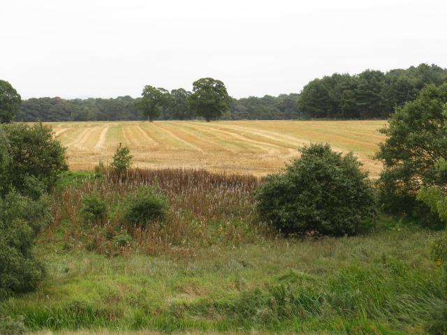 Fields Of Park Farm
