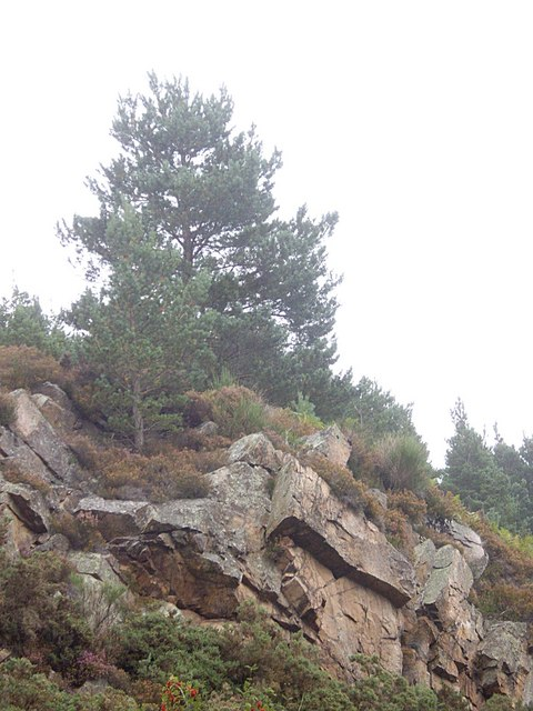 A weathered rock outcrop