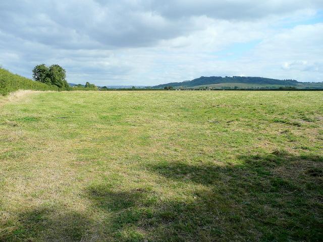 Pasture at Pamington