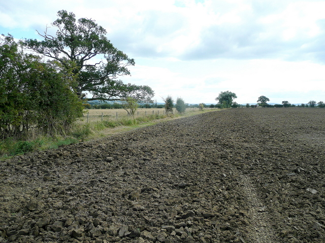 Oxenton arable land 2