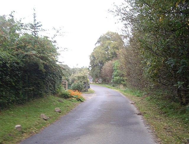 Road past Finzean sawmill