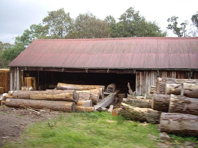 Pine logs at Finzean sawmill