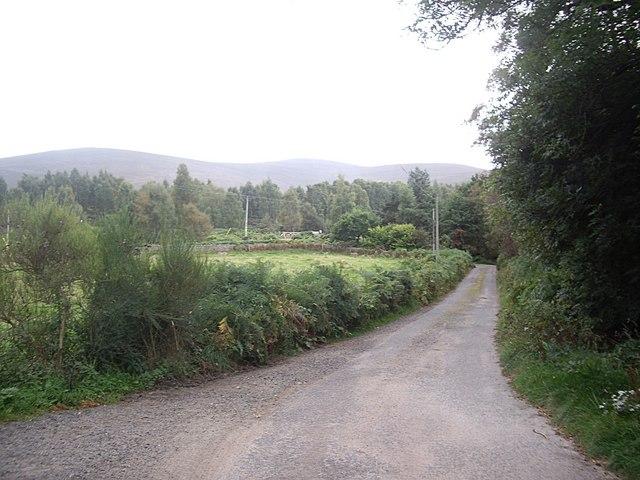 Road to Haughend