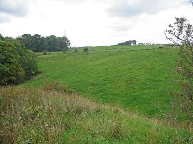 Field, Alton Burn