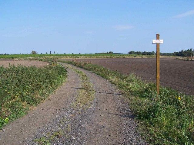 Footpath Near Shenstone