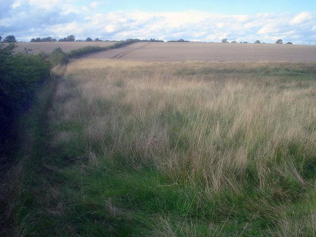 Arable land near Heather Lane