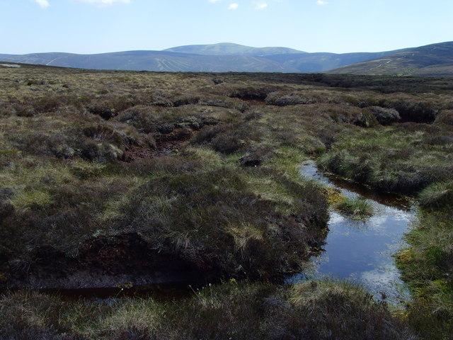 Blanket Bog in the Forest of Birse