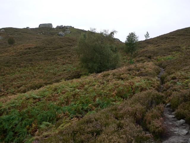 Path towards the Drake Stone