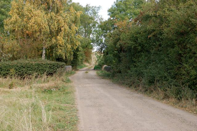 Track and bridleway north of Bascote Lodge (1)