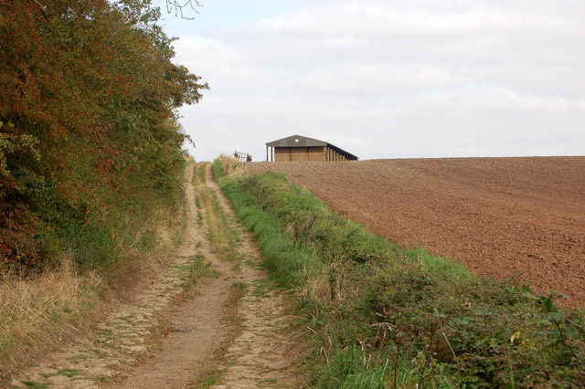 Track and bridleway north of Bascote Lodge (2)
