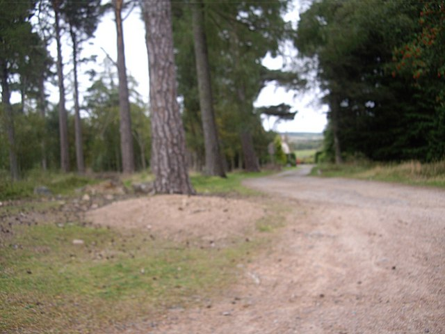 Track to Percie Cottage