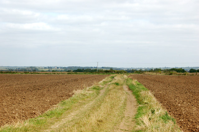 Track and bridleway north of Bascote Lodge (5)