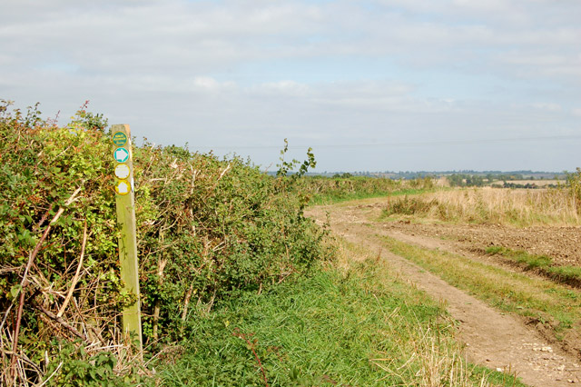 Track and bridleway north of Bascote Lodge (6)
