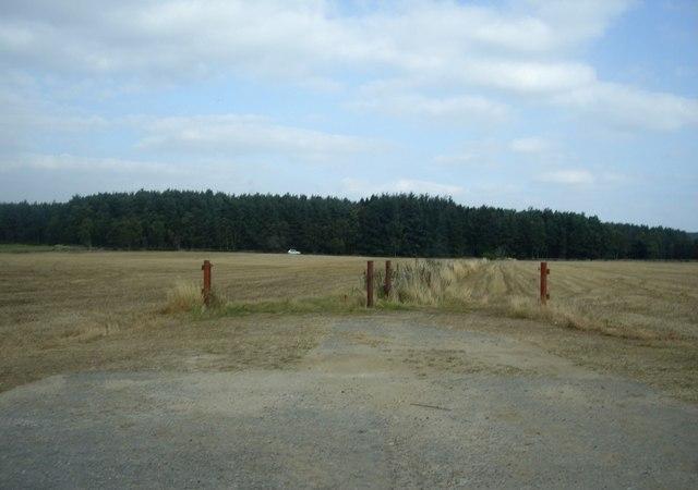 Fields opposite Raemoir Trout Fishery