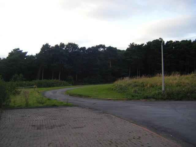 Mawsfield Wood