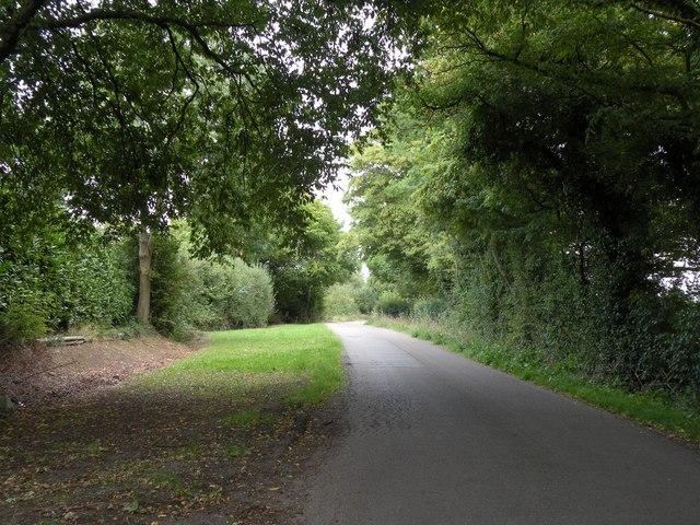 Part of Woolmers Lane
