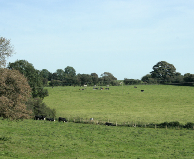 2009 : North east from the A37