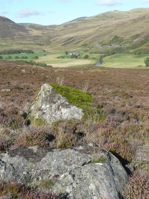 Boulders in heather