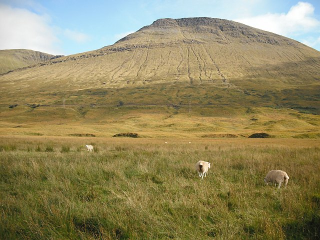 Rough grazing below Beinn Achaladair