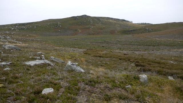 Boggy moorland below Cold Law