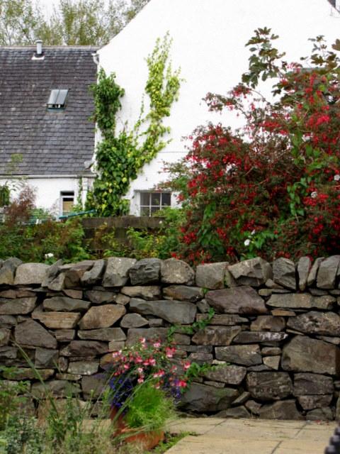 Gardens in Plockton.