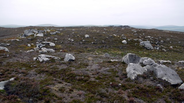 Rocky moorland north of Cold Law