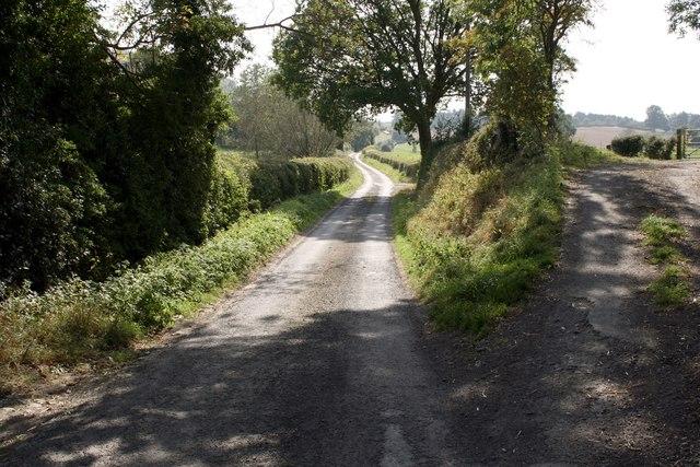 Watling Street near Stoke Wood