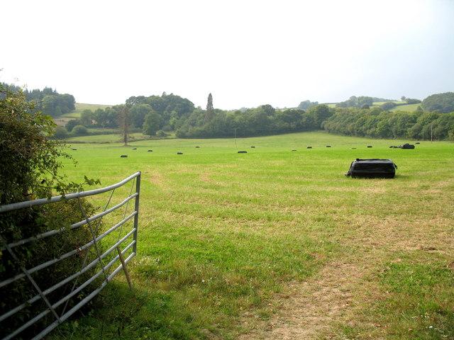 Fields Near Langaller Farm