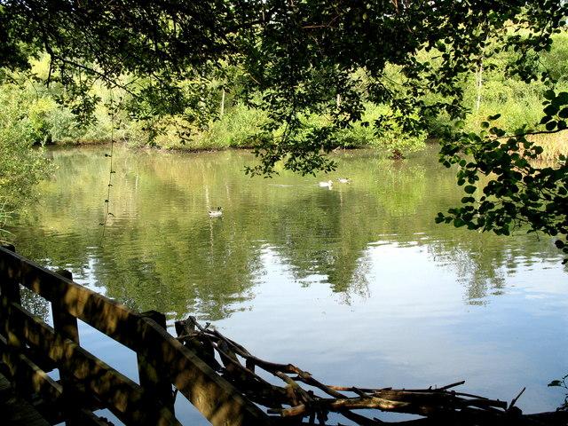 Bovey Tracey Pottery Pond