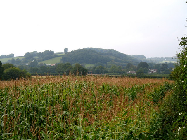 Farmland near Langaller Farm