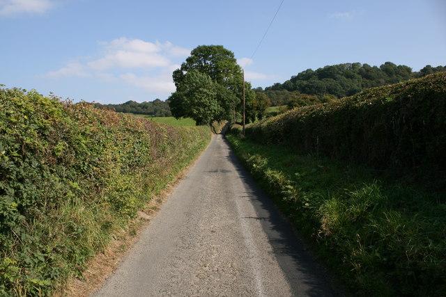 Narrow lane near Stoke Wood