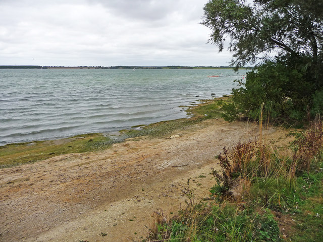 Shoreline, Grafham Water