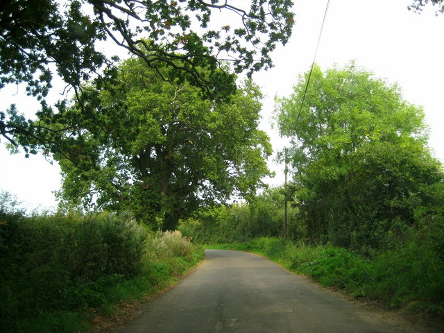 The lane between Clarkham Cross and Closworth
