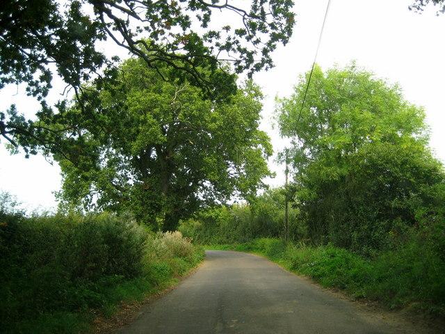 The lane between Clarkham Cross and Closworth