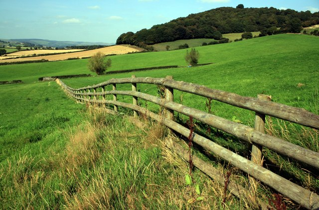 Wooden fence near View Wood