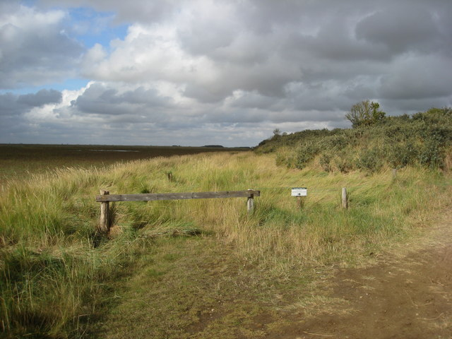 Gibraltar Point - Dunes and Saltmarsh