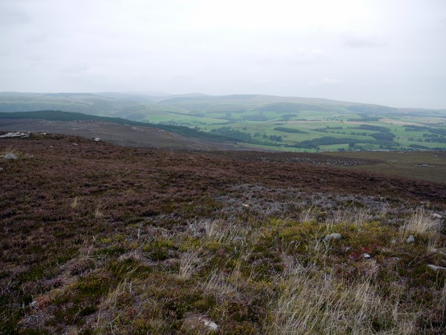 Cheviot Hills from Cold Law