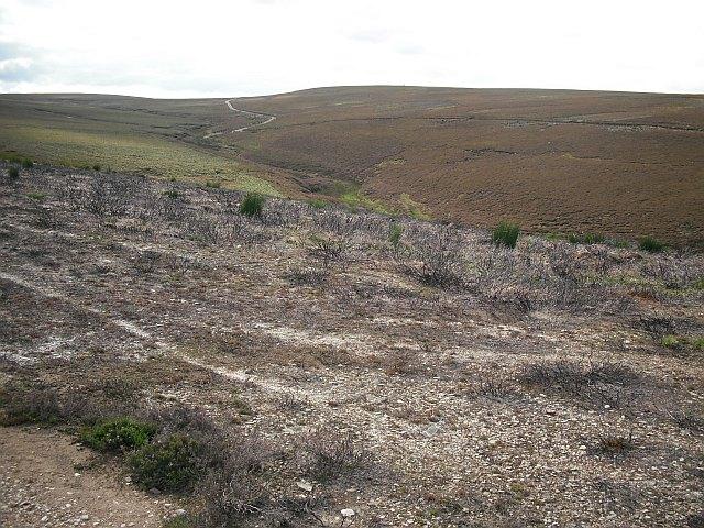 Harestone Hill