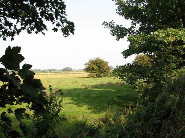 Marsh pastures beside Muck Fleet