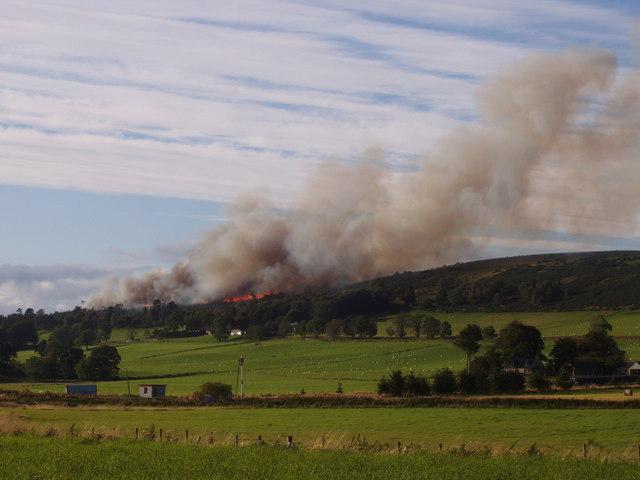 Woodland fire behind Leith Hall 19_09_2009