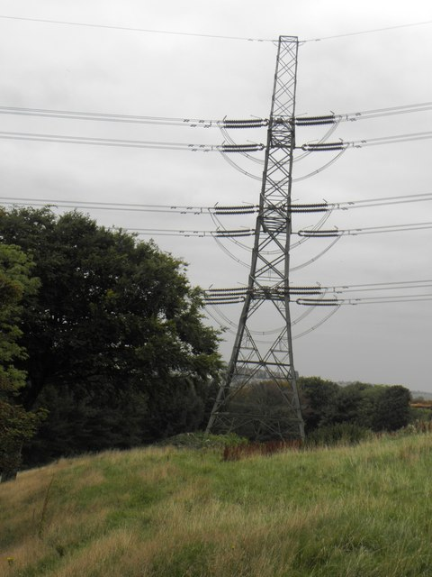 Pylon, High Birks Wood