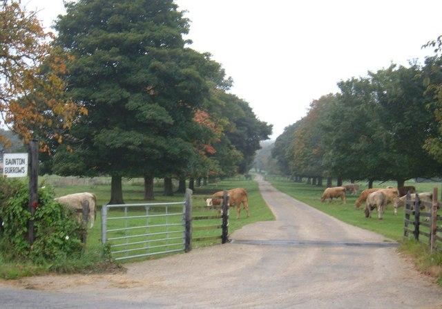 Track to Bainton Burrows Farm