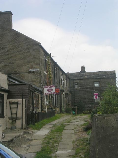 Myrtle Grove - Roper Lane