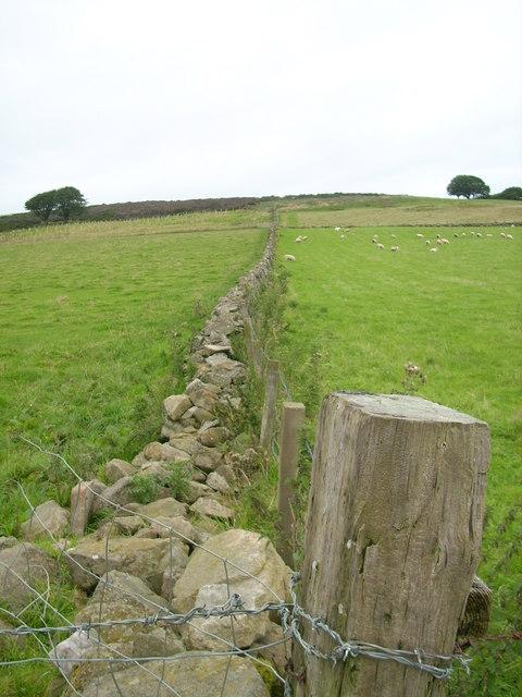 Stone Dyke near Nether Crimmond, Aberdeenshire