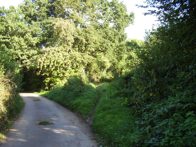 Yet another footpath junction at Bulverton
