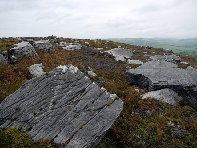 Ice-scoured rocks north-east of Cold Law