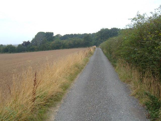 Track to  Mount Pleasant
