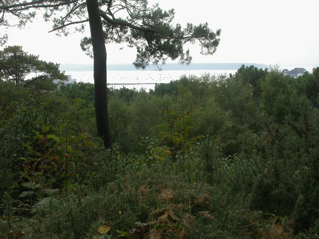 Parkstone, view