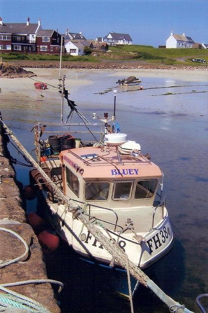 Fishing boat in Scarinish harbour